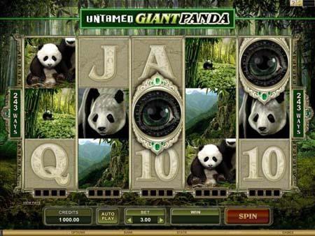 Untamed - Giant Panda Slot Game