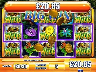 Jungle Wild Big Win slot game